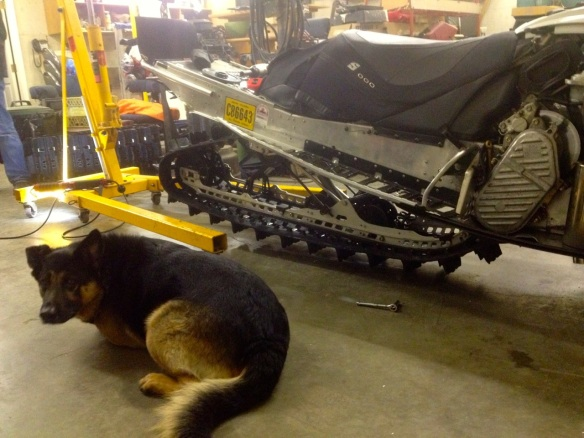 Pulling wrenches with Rambo at the Rosedale Sled Shop . Photo: Ryan Bayes